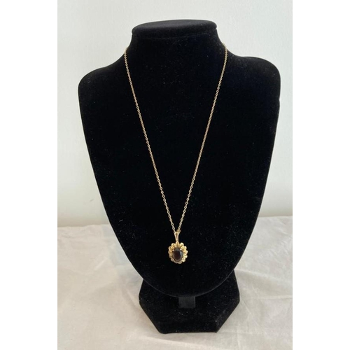 259 - 9ct Gold Pendant and Chain. Pendant having a faceted dark amethyst in a four claw setting. Fine 9ct ...