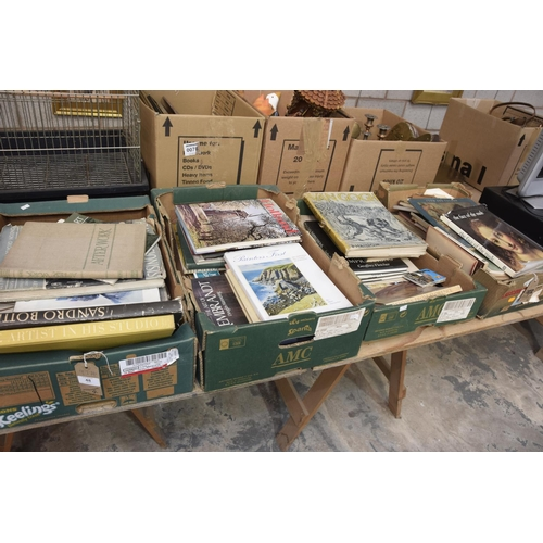 48 - Four boxes of art reference books Raphael, Phidon the Complete Edition and others....