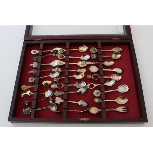 48 - Collectors Spoons in Case...