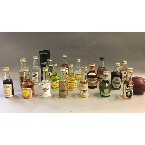 10 - Small Collection of Whisky and Other Miniatures