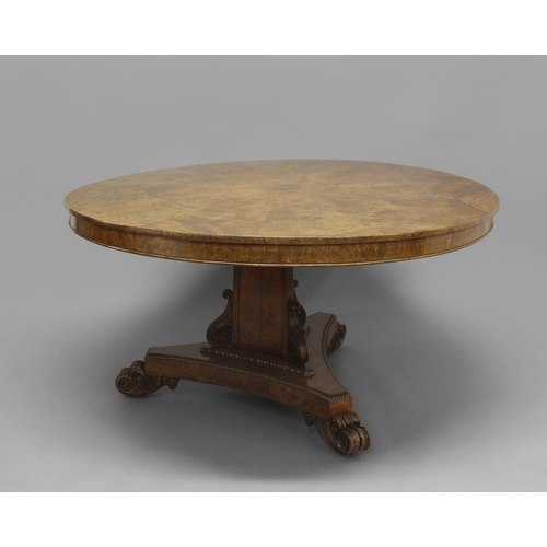 2334 - A WILLIAM IV BURR OAK BREAKFAST TABLE. The circular top with radiating segmented veneers with a cent...
