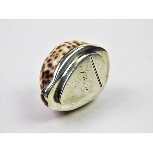 39 - A 20th century white metal mounted cowry shell snuff box, the shell designed with white metal base, ...