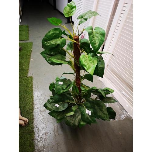 30 - Large atificial climbing plant...