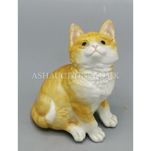 21 - ROYAL WORCESTER MODEL OF A CAT...