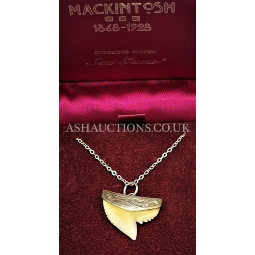 24 - PRESENTED AS A SILVER TIGER SHARK TOOTH PENDANT And CHAIN...