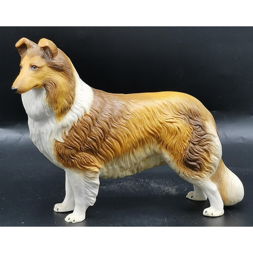 28 - AYNSLEY PORCELAIN Large 5cm x 7cm MODEL OF A ROUGH COLLIE  (Dated 1980)...