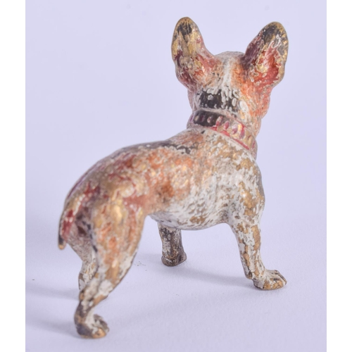 786 - A COLD PAINTED BRONZE DOG. 4 cm x 4 cm....
