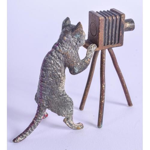 807 - A COLD PAINTED BRONZE CAT. 7 cm x 4 cm....