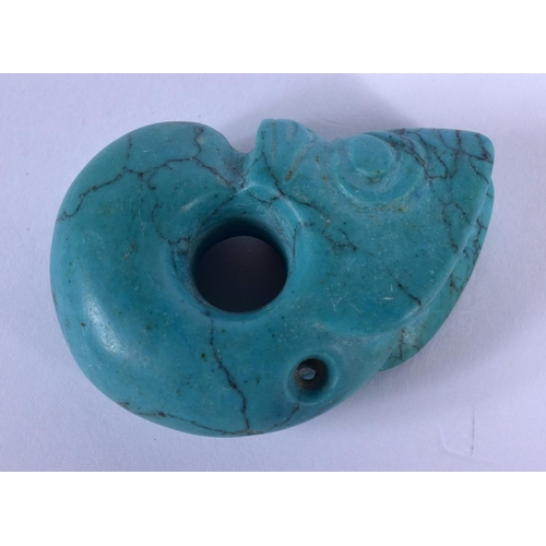 1689 - AN UNUSUAL CHINESE CARVED TURQUOISE PIG DRAGON 20th Century. 4.75 cm x 3 cm....