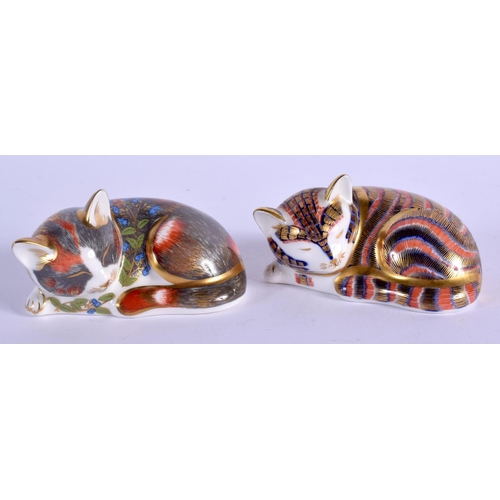 238 - Royal Crown Derby paperweight Catnip Kitten (Collectors Guild) and Sleeping Kitten. 7.5cm wide....