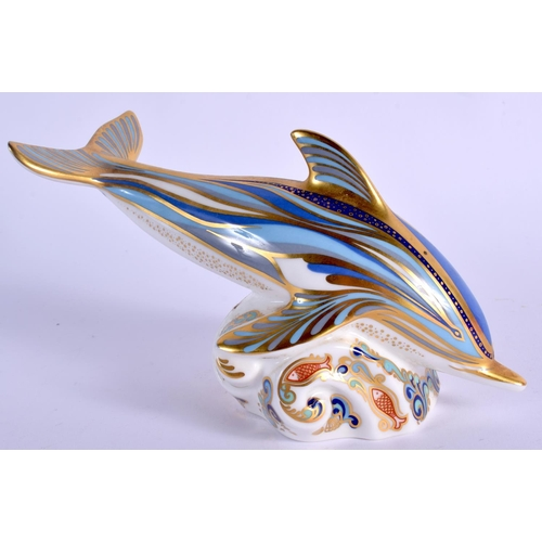 241 - Royal Crown Derby paperweight Striped Dolphin, gold signature of Sue Rowe, limited edition of 1500. ...