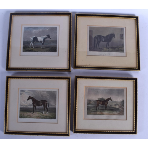 516 - A LARGE SET OF ANTIQUE FRAMED EQUESTRIAN PRIZED STALLION RACE HORSE ENGRAVINGS in various forms and ...