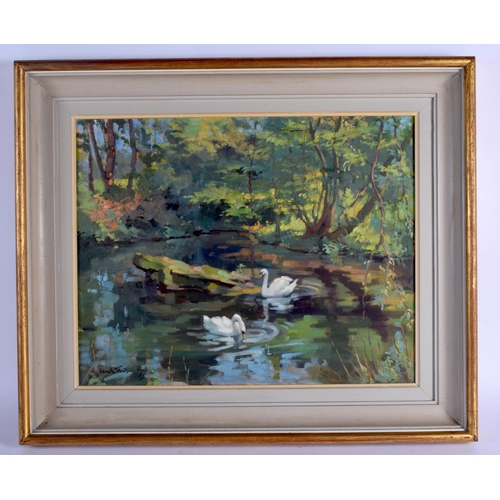553 - Continental School (20th Century) Oil on canvas, Swans swimming. Image 48 cm x 38 cm....