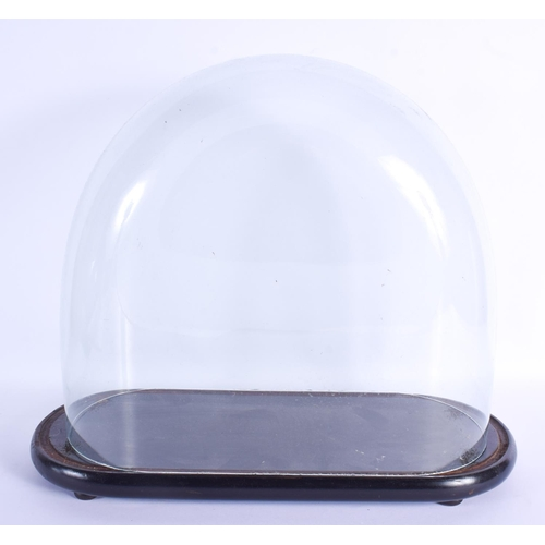 796 - A LARGE ANTIQUE GLASS DOME upon an associated base. 40 cm x 46 cm....