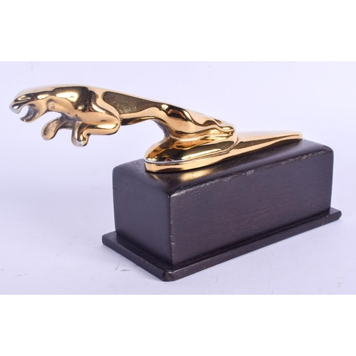 488 - A GOLD PLATED JAGUAR CAR MASCOT. 17 cm wide....