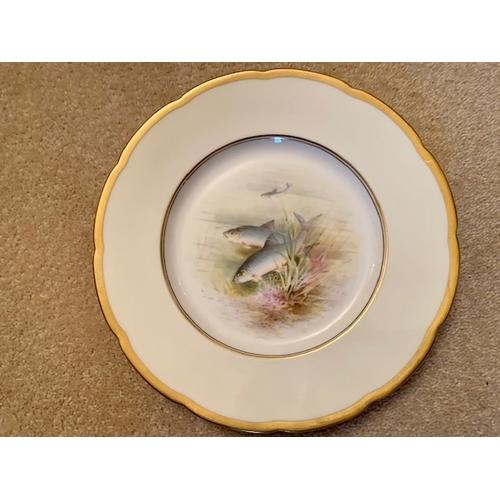 31 - Three 23cm Minton - retailed T Goode & Co. Cabinet Fish Plates - Salmon, Carp & Chubb - A. Motland (...