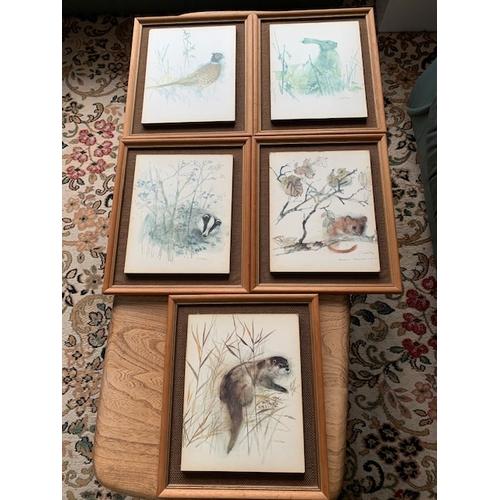 319 - 5 wildlife prints - Amos Stage 13