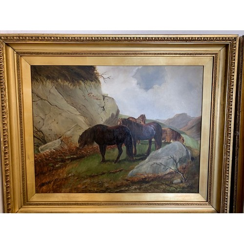 304 - Pair oils on canvas in gilt frames 'Highland Cattle' and 'Horses', 32