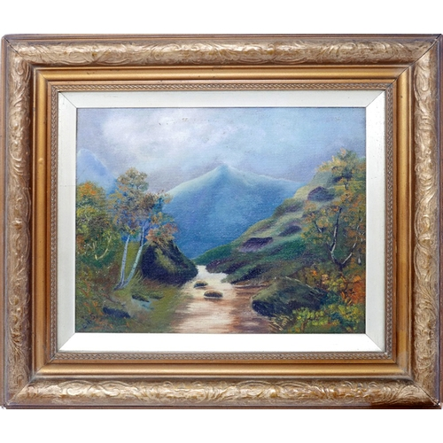 127 - Early 20th century school, a river in a mountainous landscape, oil on canvas, in glazed giltwood fra...