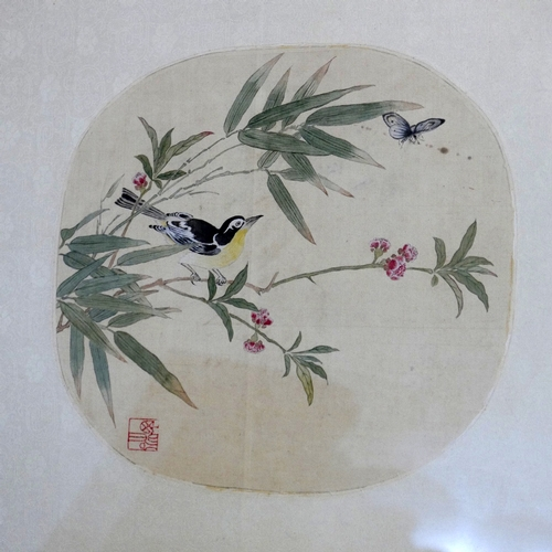 258 - Two Chinese watercolours on silk of birds on blossoming branches, signed lower right, framed and gla...