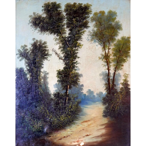 296 - Early 20th century school, a pair of landscape studies, comprising one of a woodland path, the other...