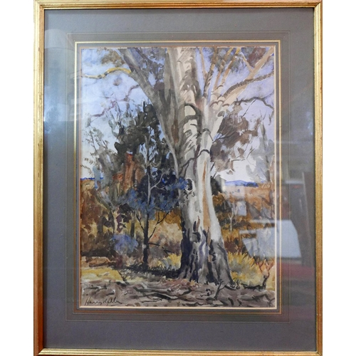 331 - Harvy Kelly (Australian, 1896-1967), A tree in the Australian bush, watercolour, signed lower left, ...