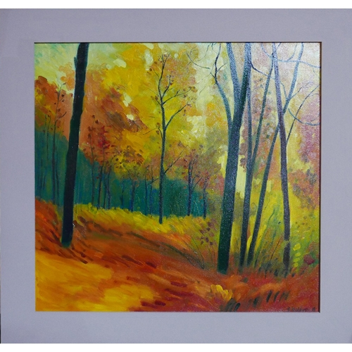 64 - Brian Baldwin, Autumnal Forest scene, oil on canvas, signed and dated '18 to lower right, 57 x 59cm...