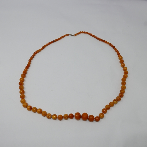 5 - A natural Baltic amber necklace composed of 95 graduated polished opaque beads of roughly spherical ...