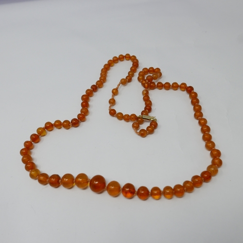 99 - A Baltic natural amber necklace composed of 90 graduated, spherical, polished translucent amber bead...