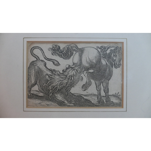 52 - After George Stubbs, two 19th century engravings, one of a lion attacking a horse, and one of two bu...