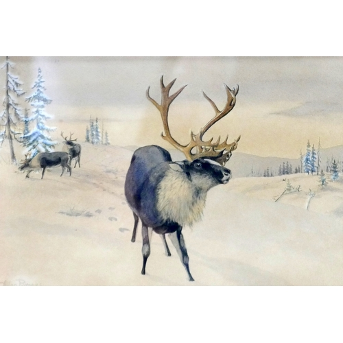 266 - Allan Brooks (1869-1946), 'Stag in the Snow' and a Stag by a Lake, a pair of watercolours, both sign...