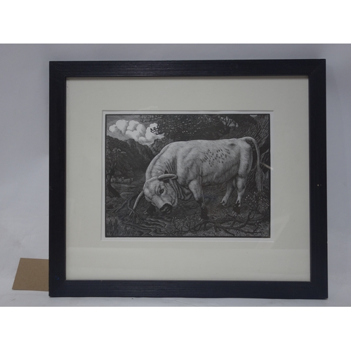 58 - Charles Tuncliff (1901-1979), wood engraving, titled 'The Chartley Bull', 23 x 31cm...
