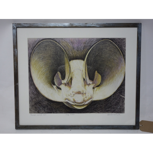 151 - Hilary Beauchamp MBE (Contemporary British), 'Funnel-eared Bat', ink and acrylic, signed and dated 2...