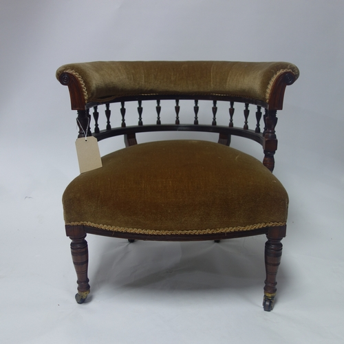 257 - A Victorian rosewood tub chair, raised on turned legs and castors marked 'copes'...