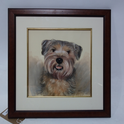 310 - A framed and glazed pastel of a terrier indistinctly signed. H.31 W.28cm...