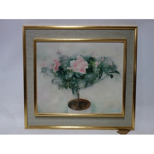 328 - A framed oil painting, still life flowers, signed Ditchfield. H.49 W.60cm...