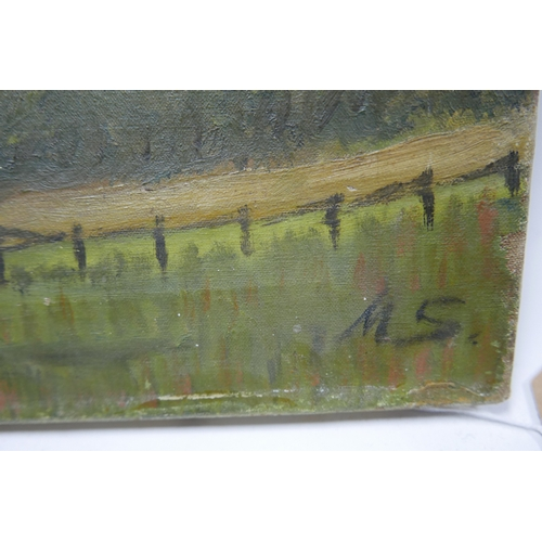 311 - Early 20th century school, Cottages in a Rural Landscape, oil on canvas, monogrammed MS to lower rig...