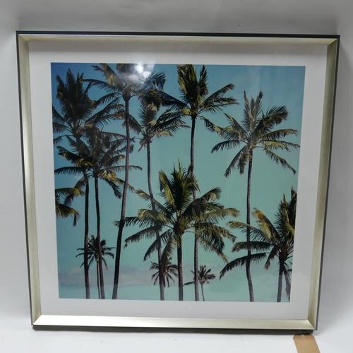 303 - A framed print of palm trees, 66 x 64cm...