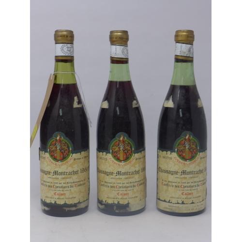 18 - Chassagne-Montrachet, 1966, Confrerie des Chevaliers du Tastevin, Calvet, 3 bottles...