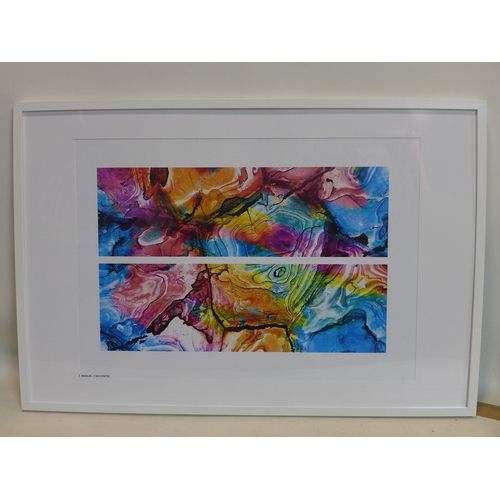 266 - A multicoloured diptych photographic print, from Studio Bezalel, 49 x 68cm...
