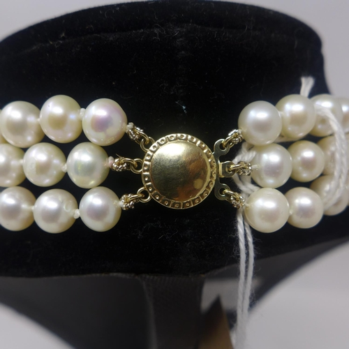 52 - A 9ct yellow gold clasped, 3-strand cultured pearl necklace, (cream-coloured pearls) L: 45cm, pearl:...