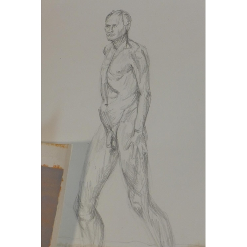 67 - Ruby Head (Contemporary artist), a collection of original nude life-drawings, to include watercolour...