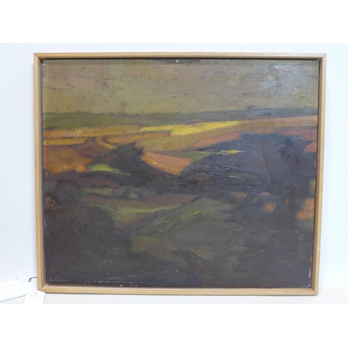 521 - D. Strasser, A framed oil on canvas of sunlit fields, signed bottom right, 46 x 55cm...