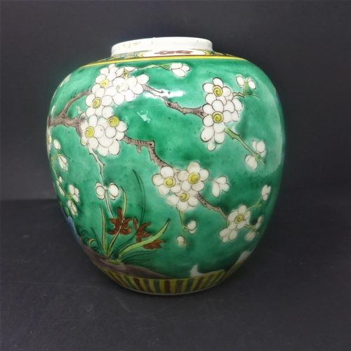 228 - A 19th century Chinese Kangxi style ginger jar, polychrome decorated with birds on blossoming trees,...