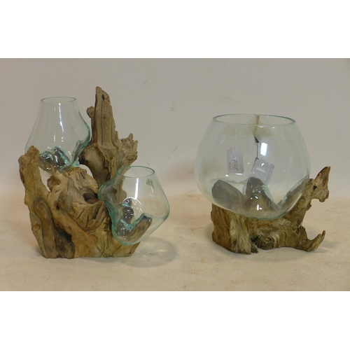 291 - Two terrariums, with molten glass vases on teak root bases, H.29cm; H.27cm (2)...