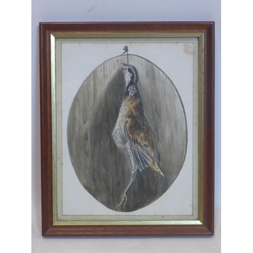 45 - A pencil and watercolour drawing of a hanging game bird...