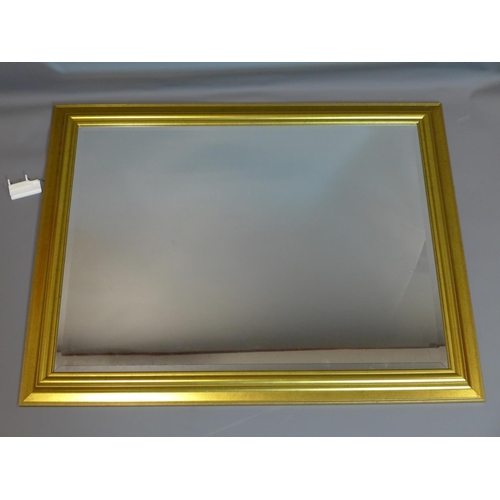 40 - A large contemporary gilt mirror, with bevelled plate, 91 x 117cm...