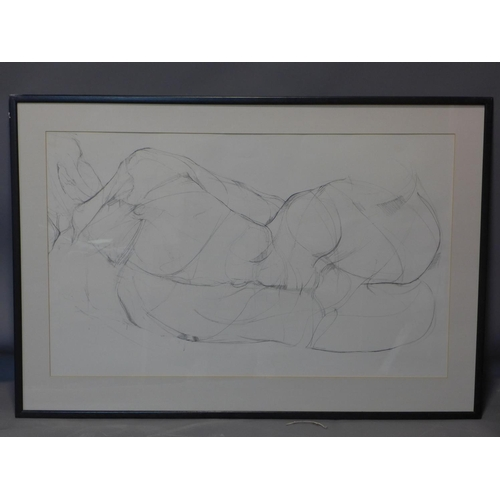 567 - Vanessa Pomeroy, life drawing of a nude lady, pencil sketch, 58 x 95cm...