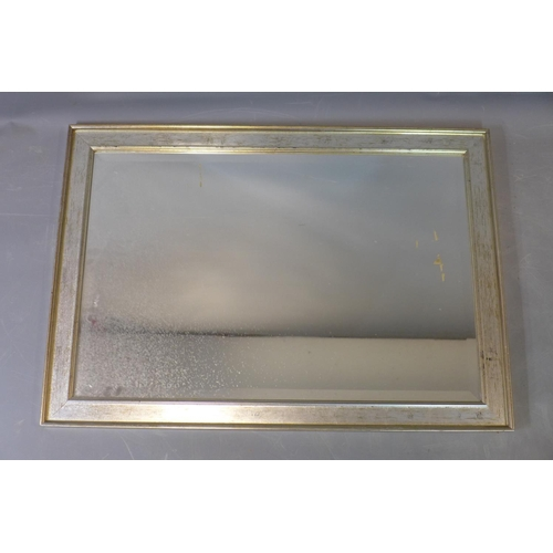 570 - A pair of contemporary wall mirrors, with silver painted frames and bevelled glass plates, 87 x 61cm...