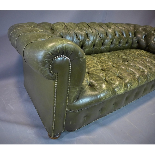 145 - Leather Chesterfield Sofa, 20th century...